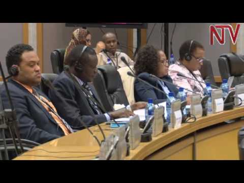 Pan-African parliament calls for launch of common African pa