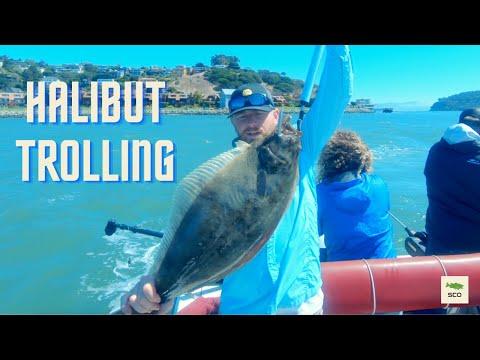 SF Bay Halibut Fishing