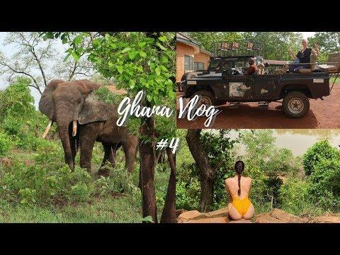 Ghana Vlog #4: Baboon Attack, Elephant Safari & Going Home