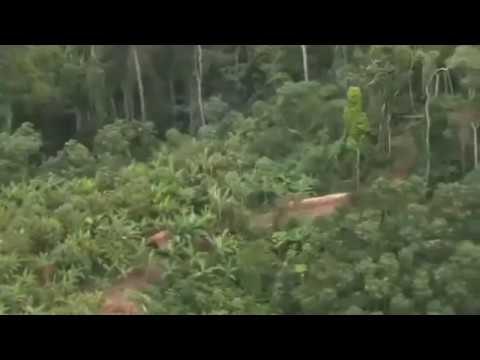 North Sentinel Island drone view (India)