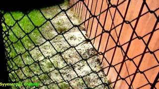 Fix A Sagging Gate