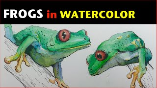 Ink & Watercolor Study | Red-eyed tree frog