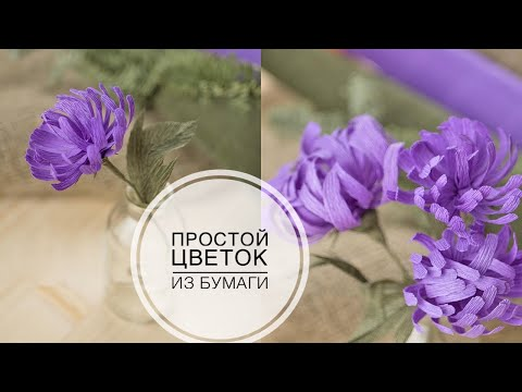 видео: Хризантема из бумаги простым способом / diy tsvoric / paper chrysanthemum in a simple way