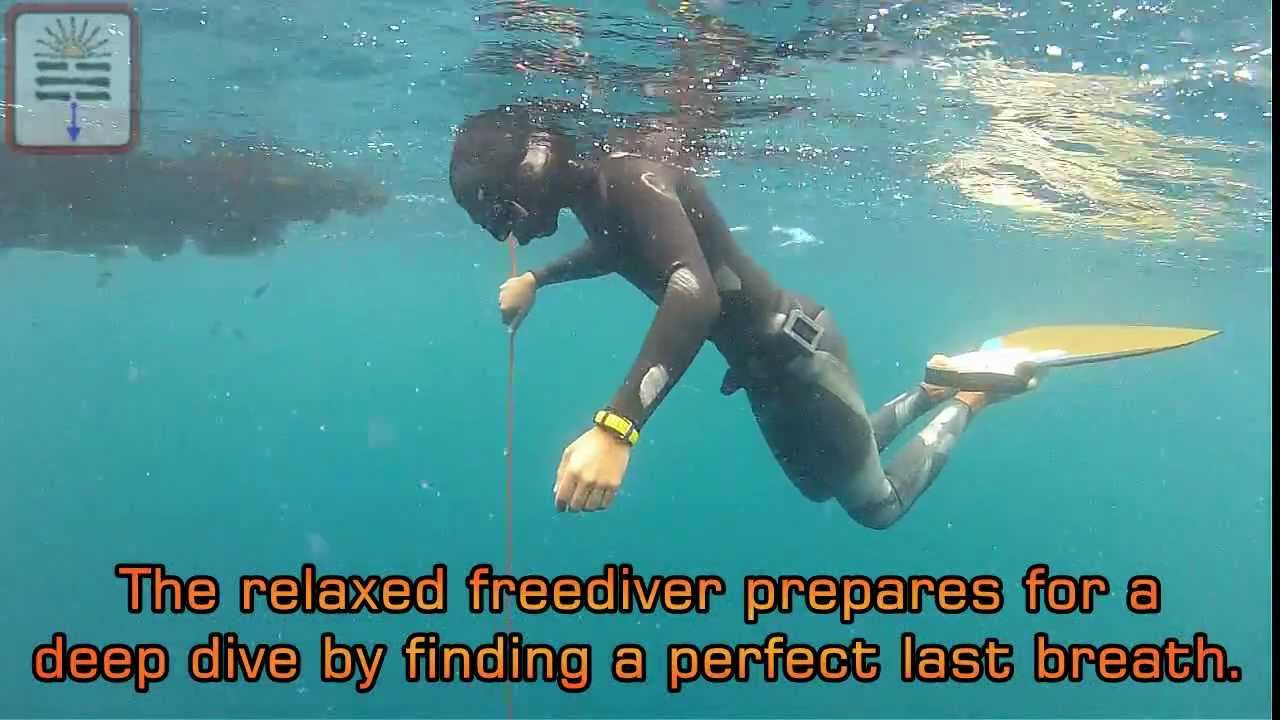 Freediving Basics: Sequence Of A Freedive: The Safety