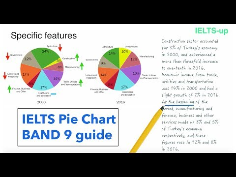 IELTS Writing task 1: Pie chart lesson