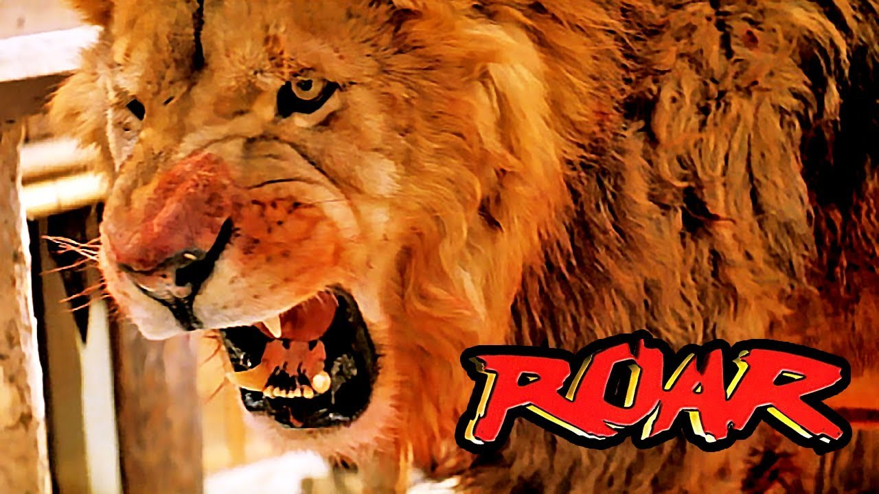 Roar Deutsch