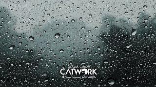 Catwork - Soğuk Gece [Official Audio] Video
