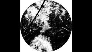 Joachim Spieth - Iliachtides (Polar Inertia Rework)