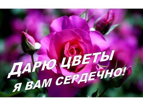 Добрый день!🌷😘 Эти Розы для Тебя! Пожелание доброго дня. Красивая  Музыкальная открытка