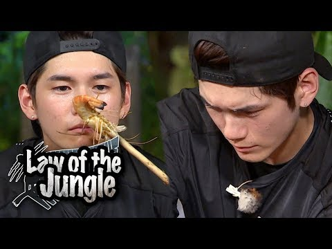 Ong Seong Wu's Eyes Are Like Chef!! [Law Of The Jungle Ep 326]