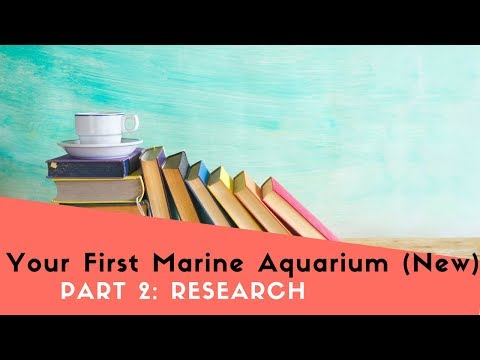How To Build Your First Saltwater Fish Tank, Part 2: Doing Your Research (Updated)