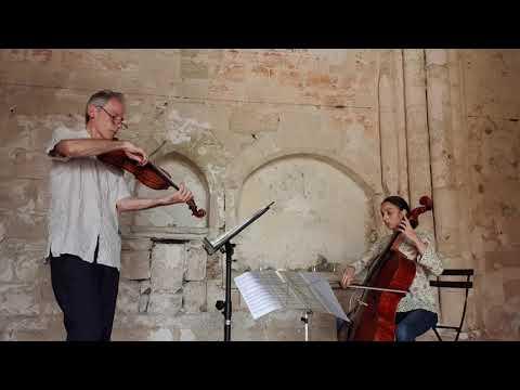 Pocket Concerto by Garth Knox (complete)