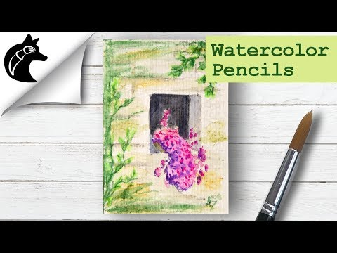 Paint with Watercolor Pencils, Ideas for Beginners