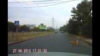 Собака-барабака на ул.Чигрина в г.Николаеве