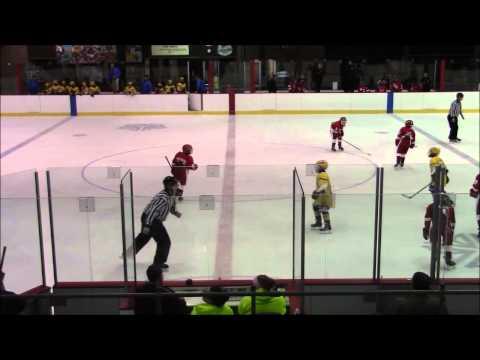 Rochester Red Wings vs West Seneca Full Game 12/21/2014