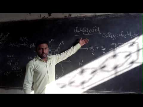 Online take a look at ninth elegance Biology Urdu Medium