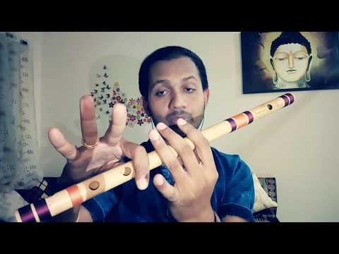 Easy Flute tutorial for beginners ||chunar|| ABCD 2