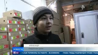 Салат с тараканами - в Екатеринбурге обнаружено подпольное производство фунчозы