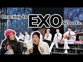EXO엑소- Acoustic Session + Lady Luck +시선둘,시선하나 REACTION!!!
