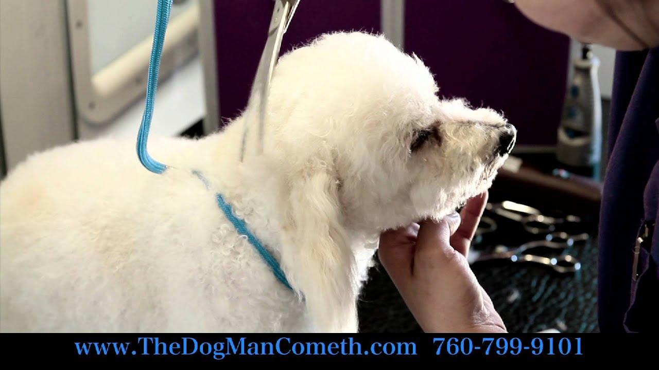 The Dogman Cometh 2nd Edition