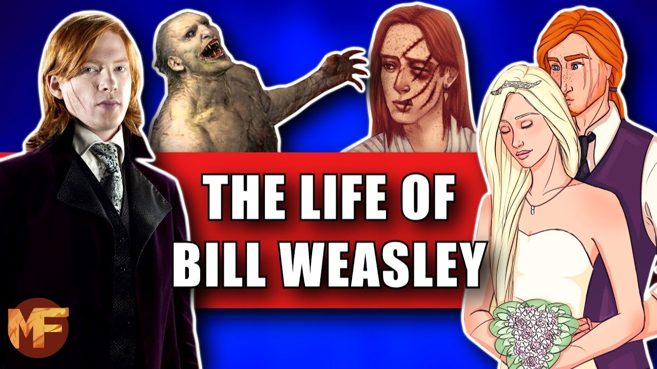 Download The Life of Bill Weasley Explained (+Bill & Fleur Relationship): Harry Potter