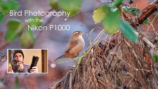 Nikon Coolpix P1000 for bird photography and birdwatching review