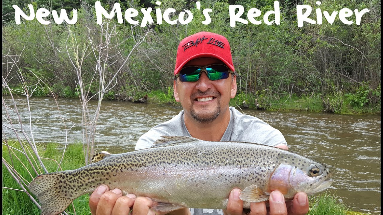 Trout fishing new mexico 39 s red river youtube for Nm fish stocking report