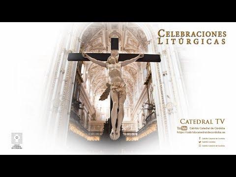 Solemne Eucaristía de XX Domingo de Tiempo Ordinario
