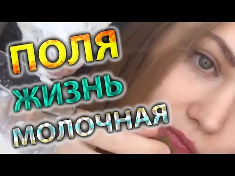 ПОЛЯ ИЗ ДЕРЕВКИ - ЖИЗНЬ МОЛОЧНАЯ - PolyaIzDerevki