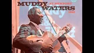 Coleção 70 anos de música. Anos 60 /  Muddy Waters Goodbye. newport  blues.