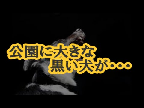 【衝撃話】公園に大きな黒い犬が・・・