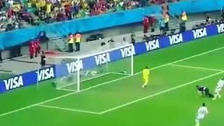 Golazo Robin Van Persie a España [Brasil2014]