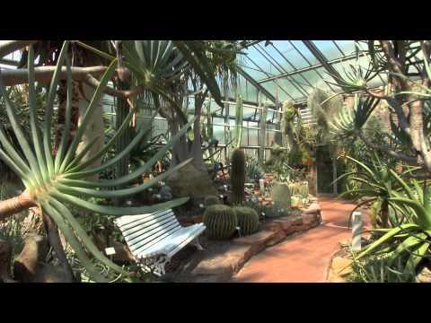 Neuer Garten Philipps Universität Marburg Botanischer Garten