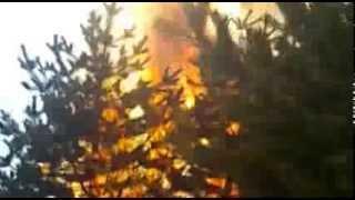 лесной пожар. видео от очевидца(, 2014-02-25T18:52:06.000Z)