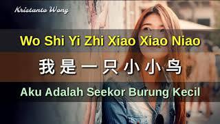 Wo Shi Yi Zhi Xiao Xiao Niao 我是一隻小小鳥 - Lei Ting 雷婷 (Aku Adalah Seekor Burung Kecil)