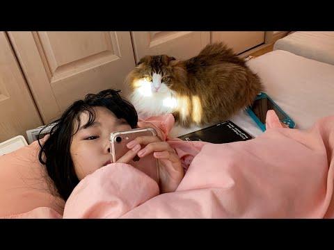 風邪をひいて学校を休んだ娘の側からずっと離れない猫