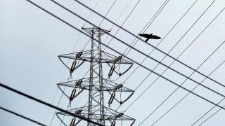 Report: National grid in