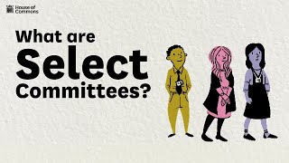 What are select committees?