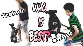 OBEDIENT JUNIOR KID AND HIS DOG WITH TRAINER   HOW YOU CAN TRAIN TO INDIAN DOG