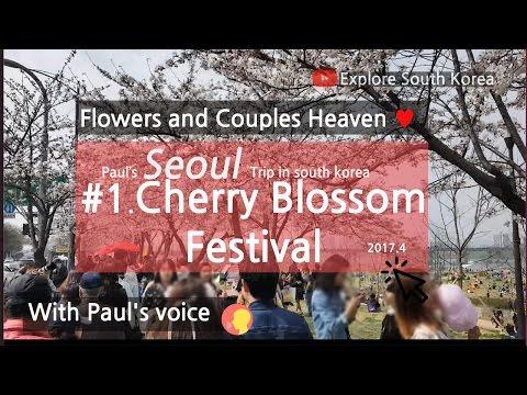 Korea Trip | Yeouido Cherry Blossom Festival 2017