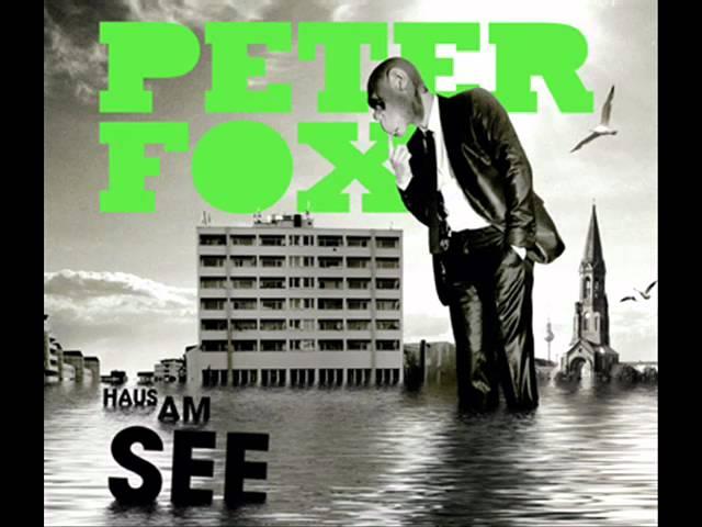 peter-fox-haus-am-see-mr-unbekannt-techno-remix-techno61347