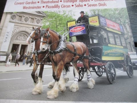 HORSE DRAWN VICTORIAN BUS. LONDON CITY TOUR. 16.08.2016