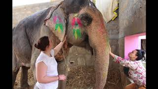 Volunteer India Jaipur Review Laura & Emmy Nursing Students Program - A Broader View
