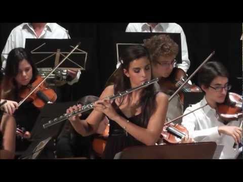 D. Cimarosa - Concerto per due flauti e orchestra (1° mov)