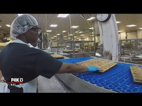 Mychal Maguire - Get A Behind The Scene's Look Inside Publix's Busy Bakery In Lakeland