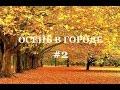 осень в городе курячий