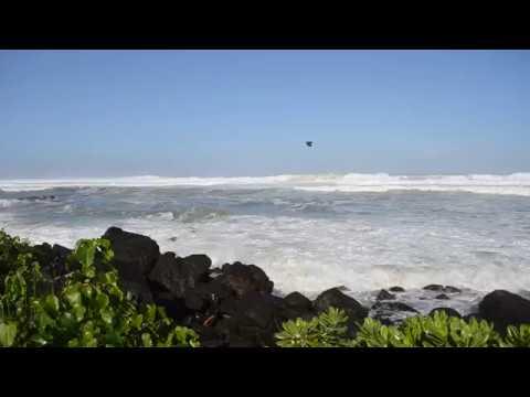 Hawaii Waves 112618