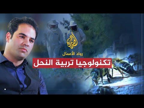 رواد الأعمال - أيرس.. تكنولوجيا تربية النحل  - 19:22-2018 / 7 / 17