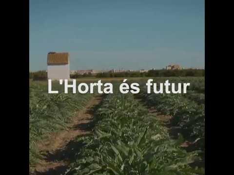 Les Corts aproven la Llei de Protecció de l'Horta de València #HortaÉsFutur