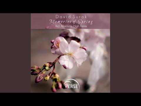 Memories of Spring (Original Mix)